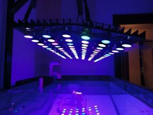 Морской аквариум: 250 литров САМП 100 литров. Самодельное диодное освещение. - освещение.jpg