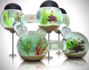 Фото интересных аквариумов. - Аквариум молекула.jpg