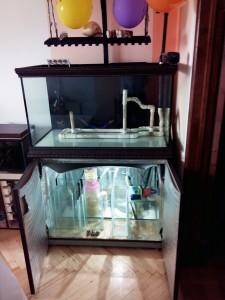 Морской аквариум: 250 литров САМП 100 литров. Самодельное диодное освещение. - Чисты аквас.jpg