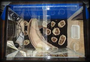 Создание пресноводного аквариума 40 литров с нуля. - дренажные колодцы.jpg