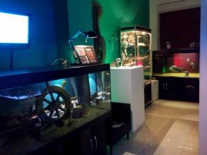 Сказ о том, как я не узнал истории аквариумистики посещение музея Живые акулы и как я почувствовал дух места. - 1.jpg