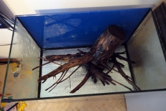коряга для аквариума своими руками