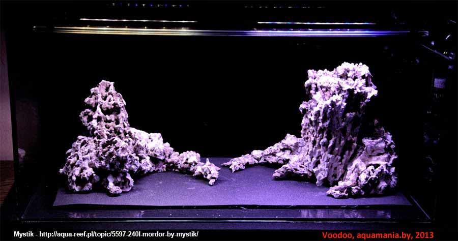 Морской-аквариум-14-1