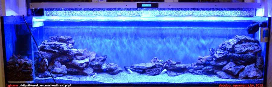 Морской-аквариум-14-2