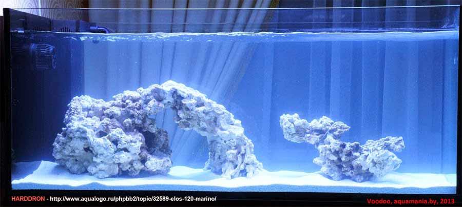 Морской-аквариум-14-3