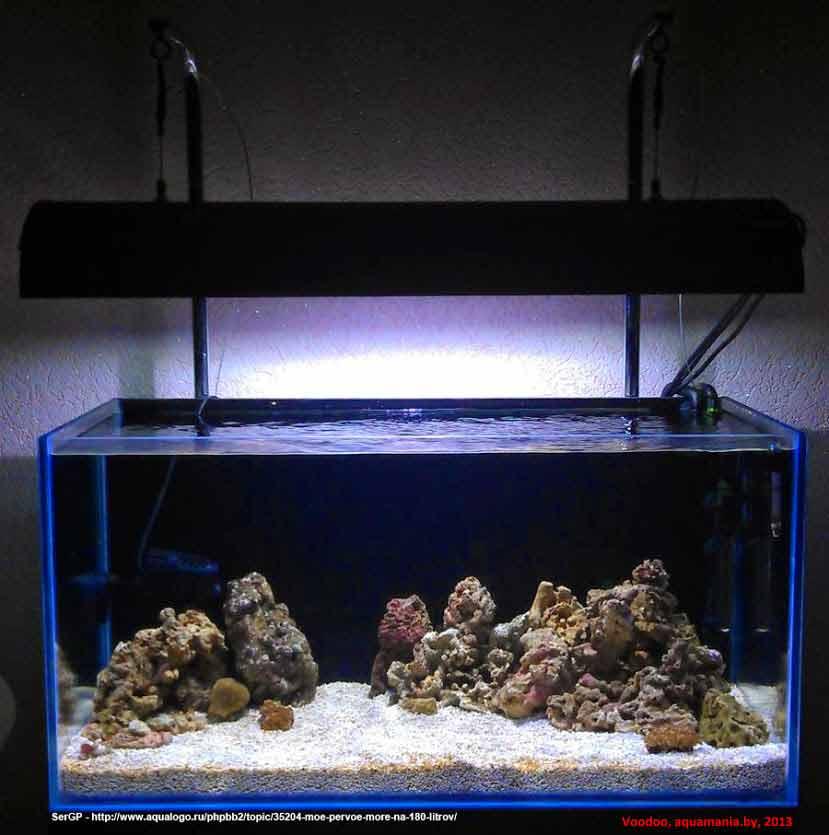 Морской-аквариум-2-3