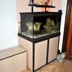 общий вид морского аквариума
